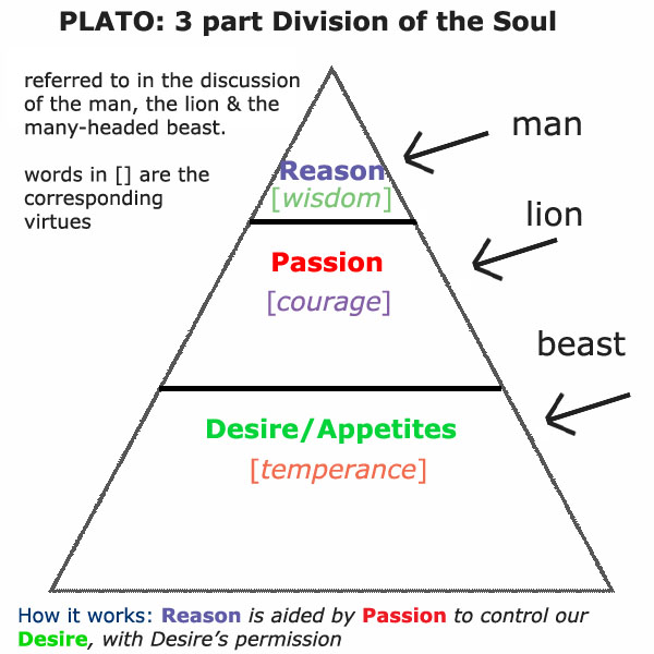 explain plato s theory of the realm Education and plato's parable of the cave  the intelligible realm comprises what plato calls the  pp 118-169, and jon moline, plato's theory.